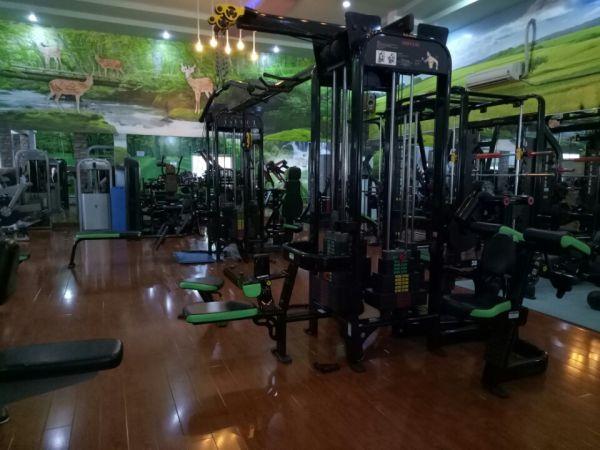 Phòng tập gym T&V Fitness Center, Quận 8