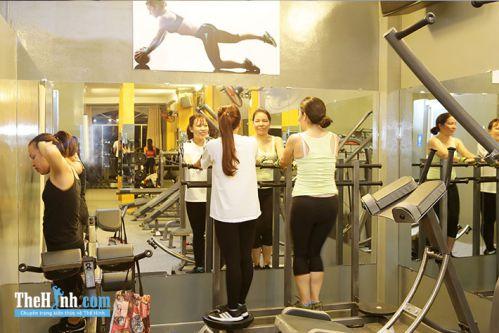 Phòng tập gym Royal Fitness, Bàu Cát 5, Quận Tân Bình