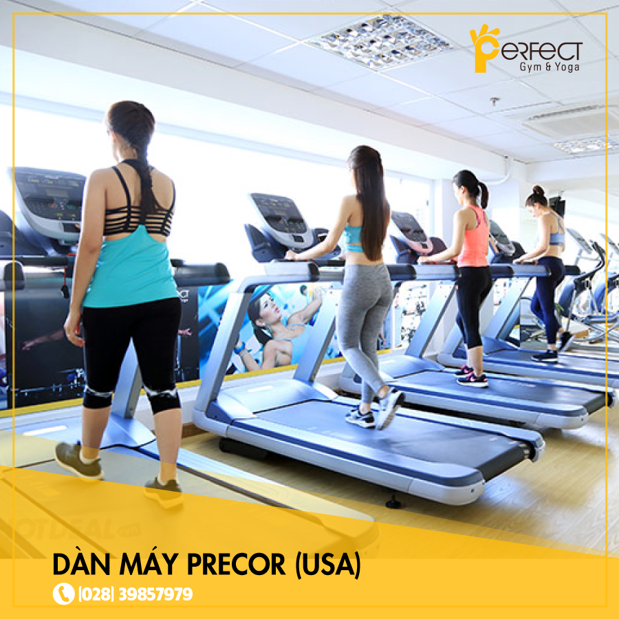 phong-tap-perfect-gym-and-yoga (1)