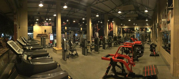 Olympic Gym Fitness